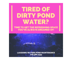 Tired Of Dirty Pond Water?