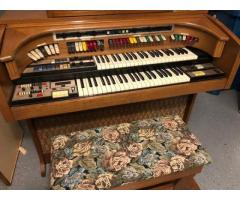 Organ Free- musical instrument (Schaumburg)
