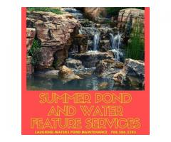 Summer Pond And Water Feature Services